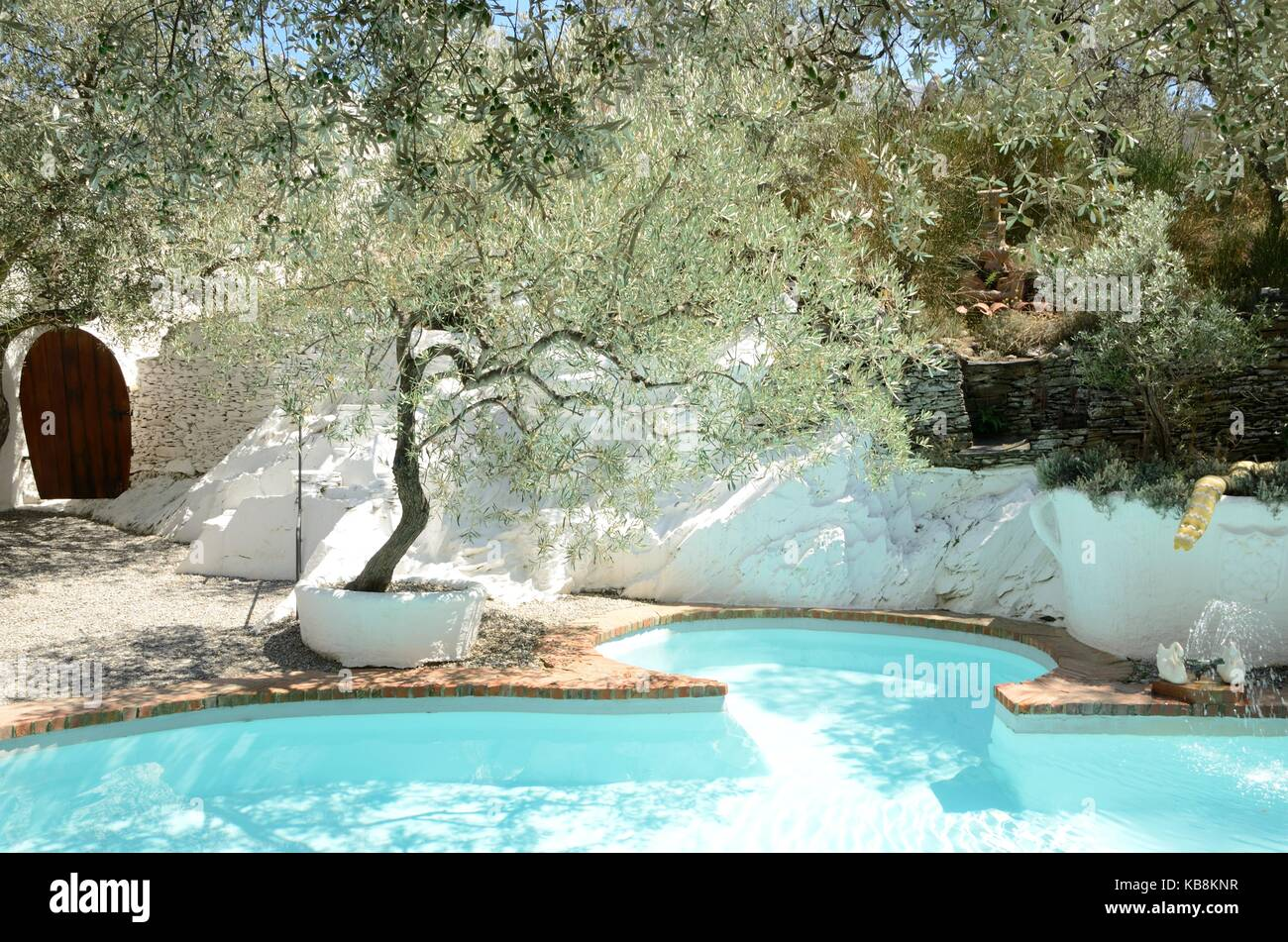 sailcloth beach chairs ergonomics desk chair olive tree swimming pool stock photos & images - alamy