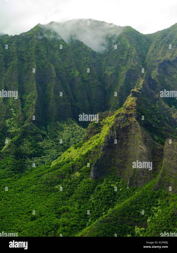 Tropics Tropical Landscape View Above Overview Stock &