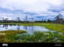 Estonia Lahemaa National Park