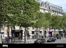 Champs Elysees Shops Stock &