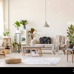 Living Room Pouf Formal Curtains On Rug And Plants In Spacious Interior With Grey Chair Near Beige Couch Real Photo