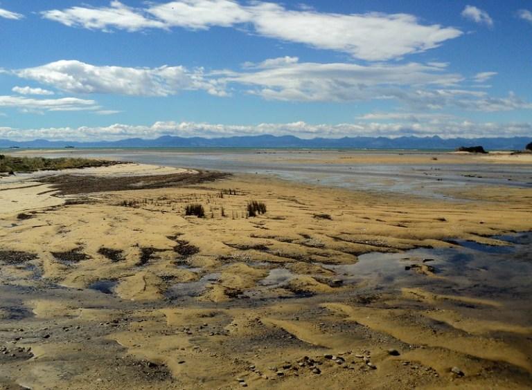 Abel Tasman National Park, South Island, New Zealand - the tea break project solo female travel blog
