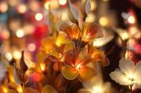 Chinese Flower Lamp | Anton Bielousov | Flickr