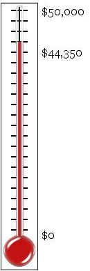 thermometer (38)
