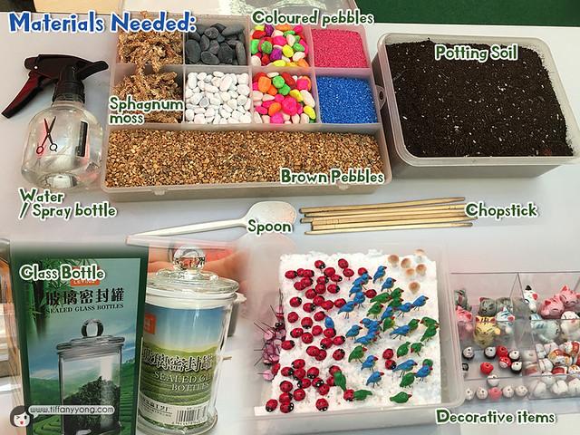Ecoponics Terrarium Material List