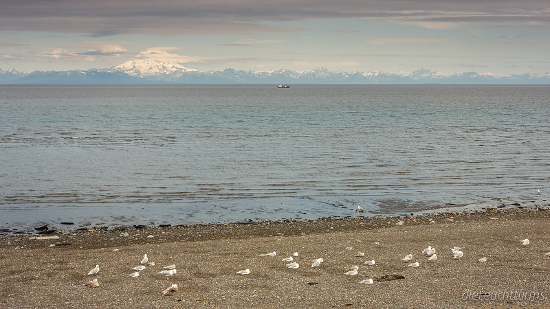 View above Cook Inlet