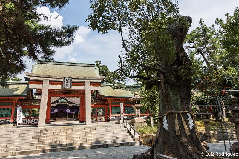 Sumiyoshi-Taisha-30