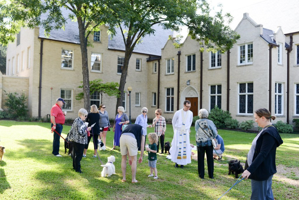 2016-10-01 Blessing of the Animals