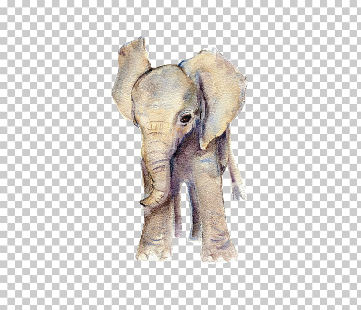 elephant watercolor painting infant