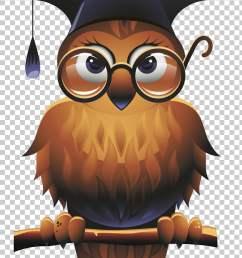 owl square academic cap school teacher wise man brown owl illustration png clipart [ 728 x 1164 Pixel ]