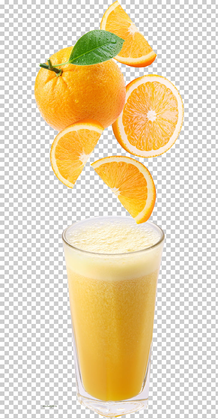 hight resolution of orange juice cocktail sangria orange drink orange drink orange juice in highball glass png