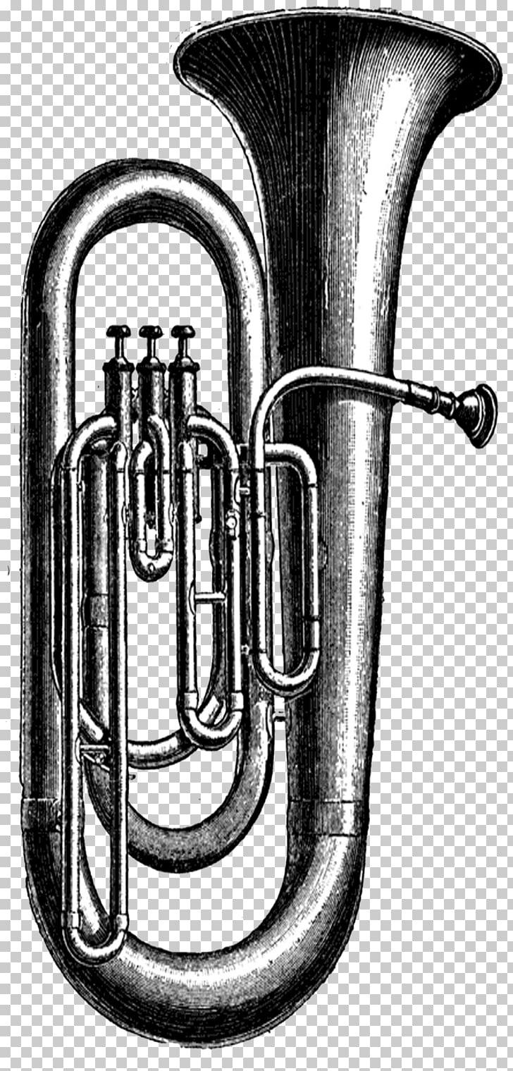 medium resolution of tuba musical instruments sousaphone tuba png clipart
