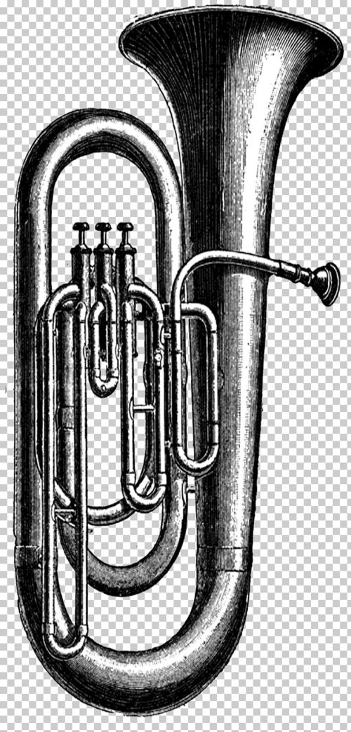 small resolution of tuba musical instruments sousaphone tuba png clipart