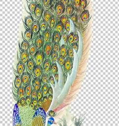 bird peafowl feather painting peacock feather png clipart [ 728 x 1417 Pixel ]