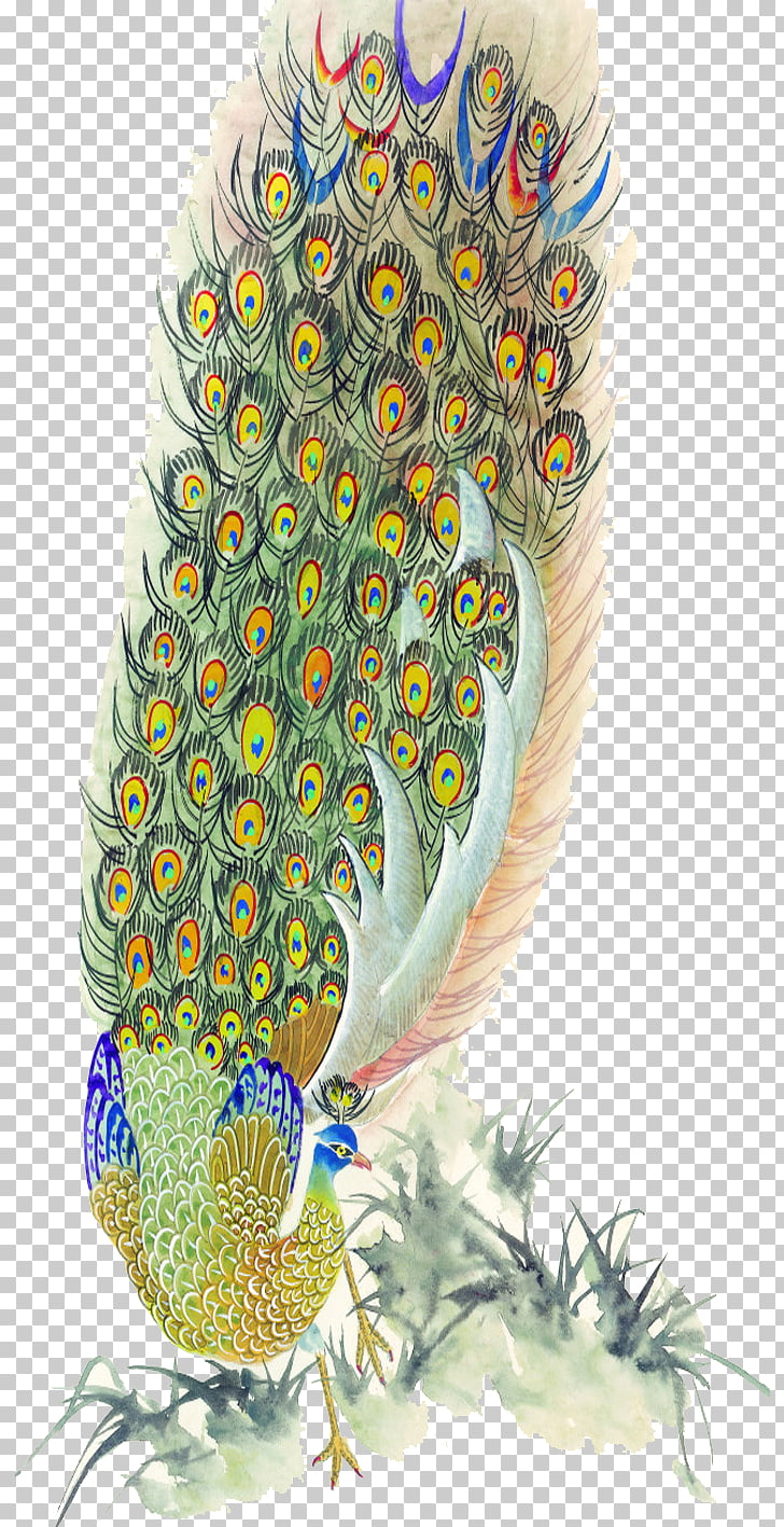 hight resolution of bird peafowl feather painting peacock feather png clipart