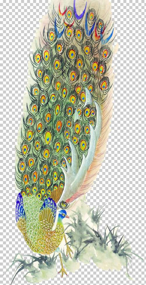 small resolution of bird peafowl feather painting peacock feather png clipart