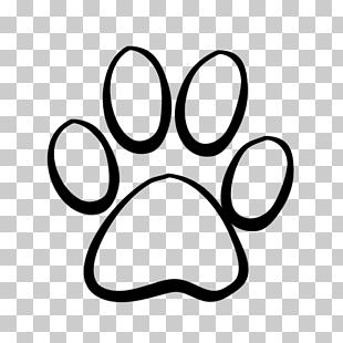 1 915 lion paw