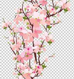 branch tree spring tree branch transparent pink cherry blossom flowers illustration png clipart [ 728 x 1213 Pixel ]
