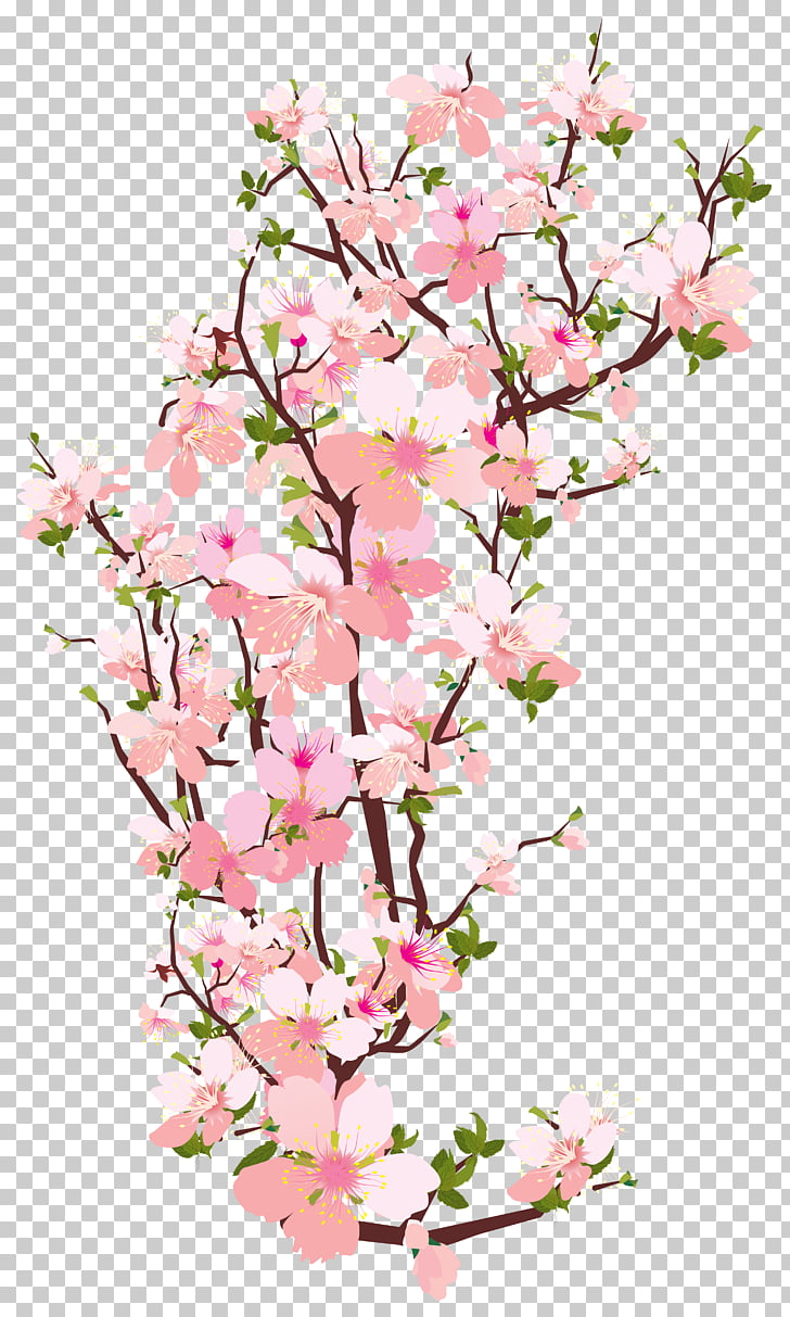 hight resolution of branch tree spring tree branch transparent pink cherry blossom flowers illustration png clipart