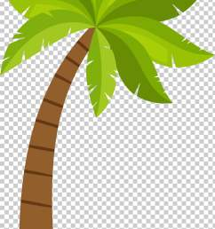 coconut arecaceae cartoon coconut tree pattern green and brown tree illustration png clipart [ 728 x 1213 Pixel ]