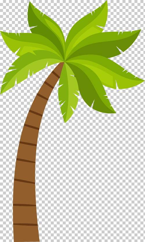 small resolution of coconut arecaceae cartoon coconut tree pattern green and brown tree illustration png clipart