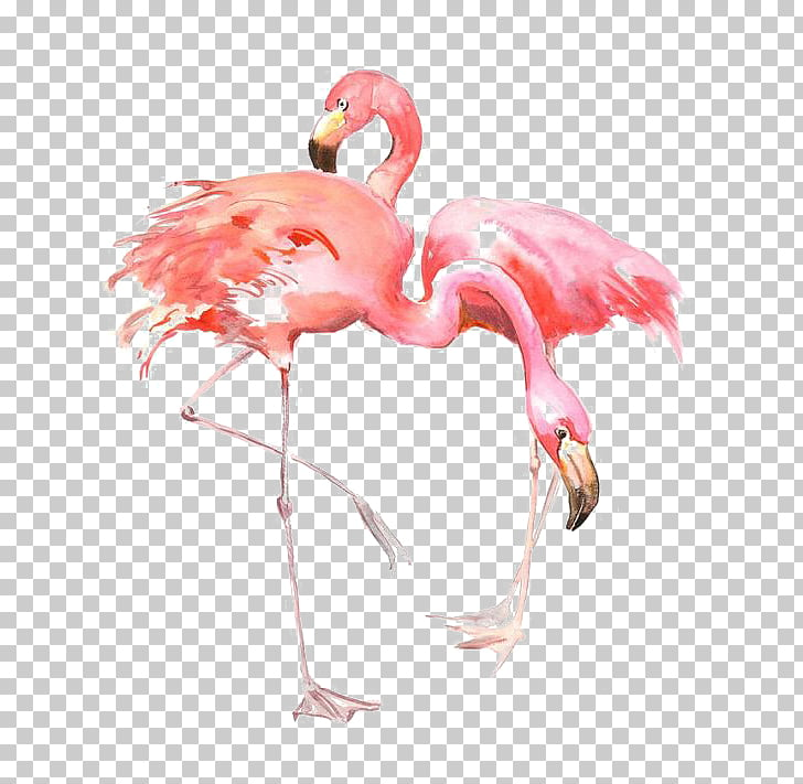 flamingo allposters com printing