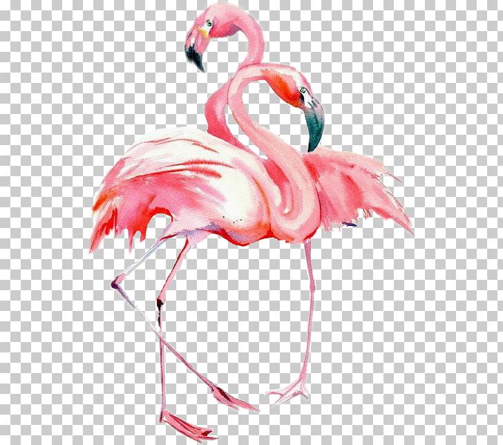 bird watercolor painting drawing