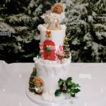 The Christmas Cake Competition Sponsored By Kitchenaid At