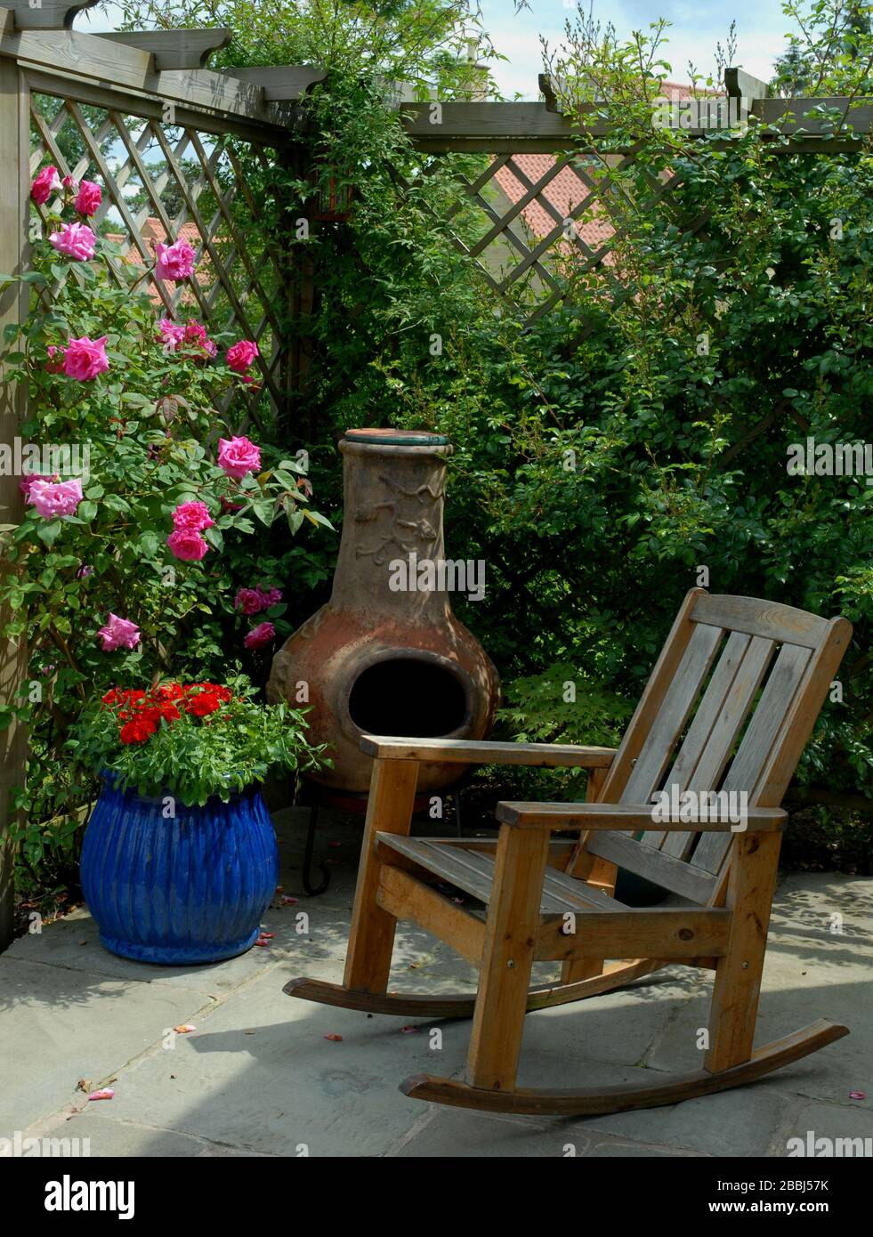 https www alamy com patio corner with wooden rocker enclosed with a wooden pergola and trellis adorned with roses including the thornless pink rose rosa zephirin droui image351367847 html