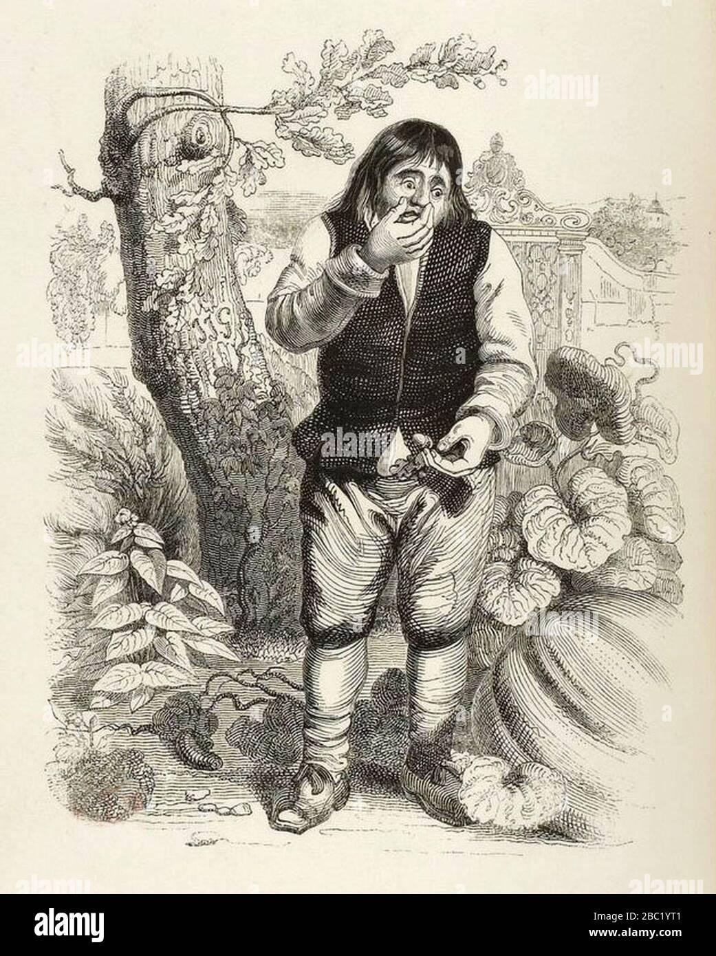 Le Gland Et La Citrouille : gland, citrouille, Grandville, Fables, Fontaine, 09-04, Gland, Citrouille, Stock, Photo, Alamy