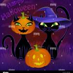 Halloween Night Vector Poster With Black Cats Jack O Lantern Witch S Hat Moon Cobweb And Bats Stock Vector Image Art Alamy