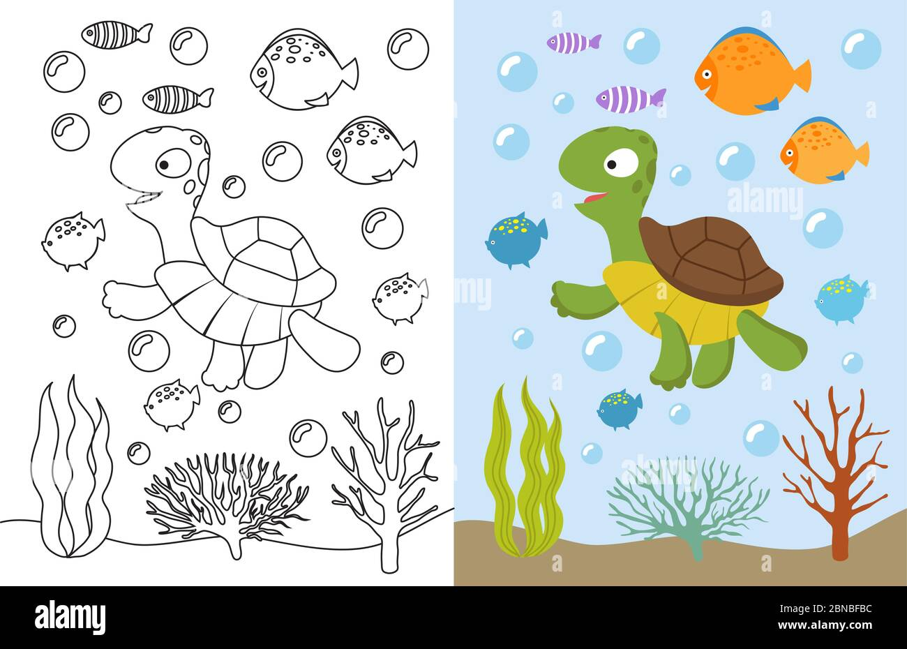 Turtle Coloring Pages Cartoon Swimming Sea Animals Underwater Vector Illustration For Kids Coloring Book Underwater Sea Turtle Animal And Fish Stock Vector Image Art Alamy