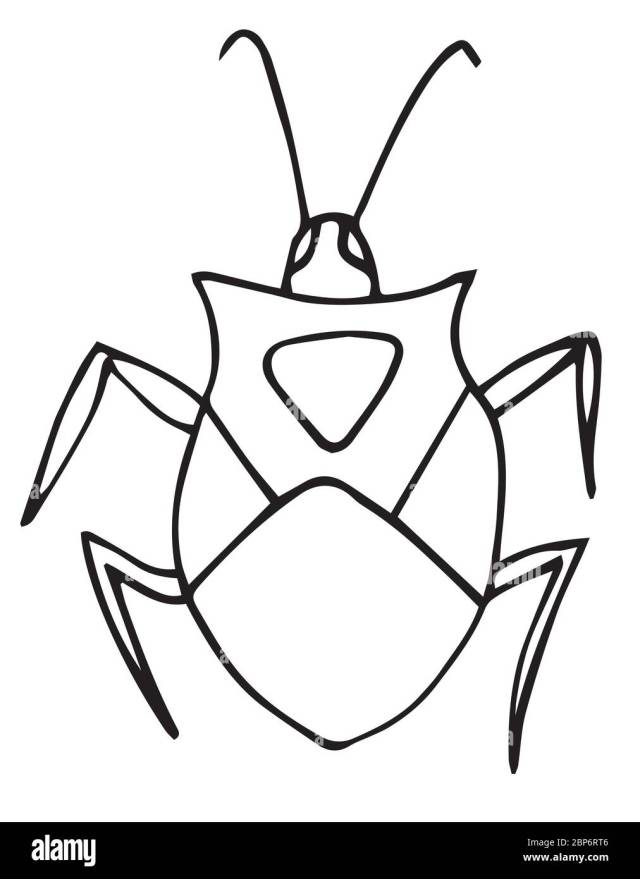 Bug coloring page, for kids, outline, vector picture. isolated