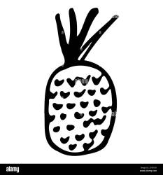 Pineapple Hand drawn outline doodle icon Transparent isolated on white background Vector illustration for greeting cards posters patches prints Stock Vector Image & Art Alamy