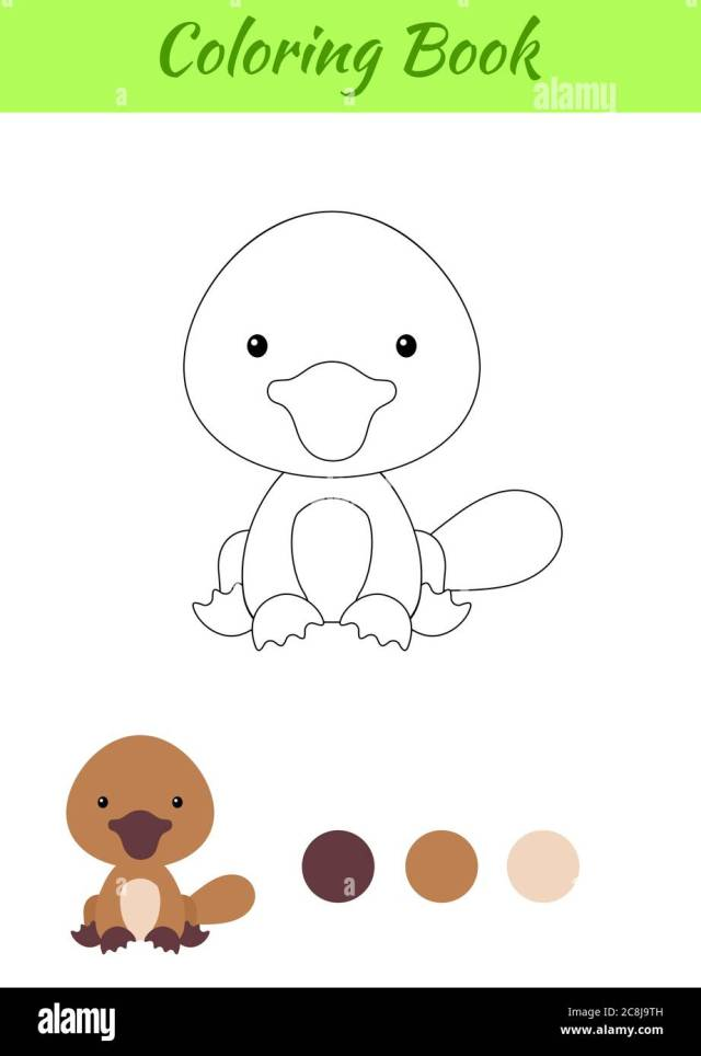 Coloring page little sitting baby platypus. Coloring book for kids
