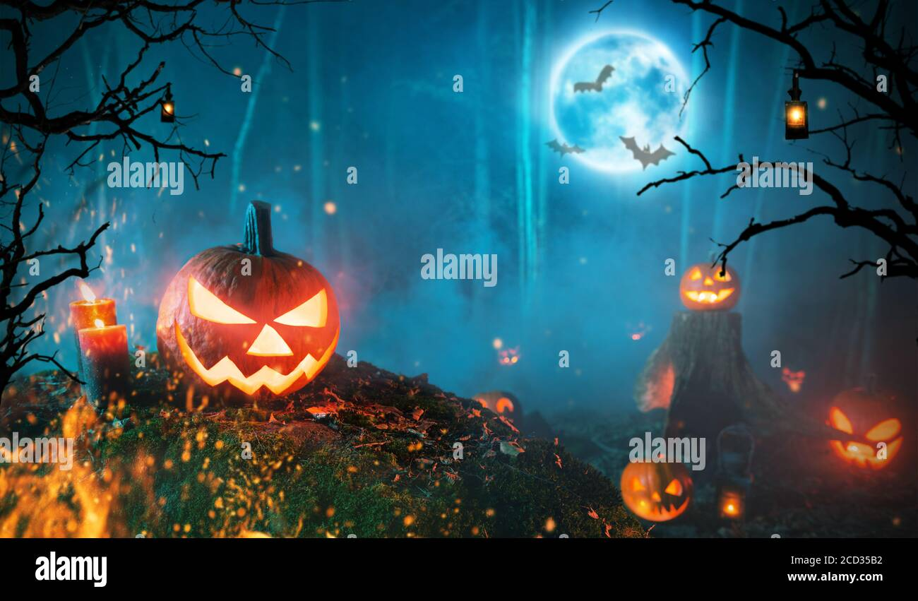 Browse 1,673 dark halloween background stock photos and images available, or start a new search to explore more stock photos and images. Spooky Halloween Pumpkins In Dark Forest Scary Halloween Background With Free Space For Text Stock Photo Alamy