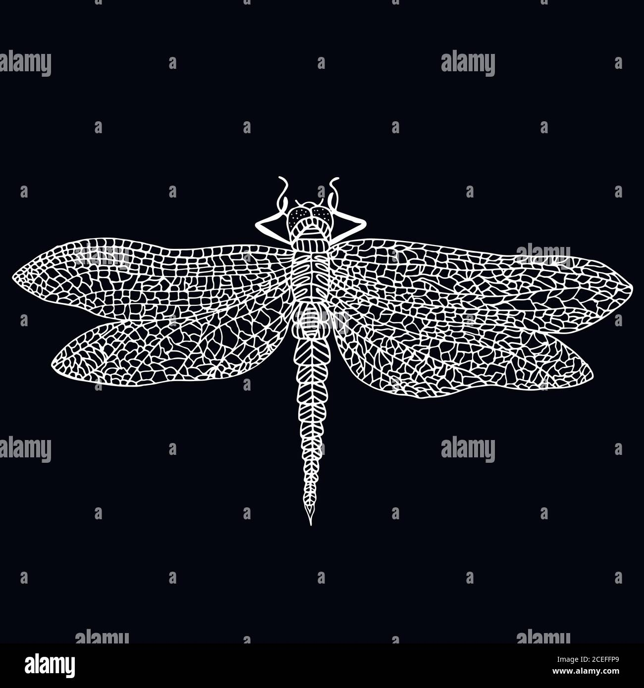 Dragonfly Drawing Black And White Stock Photos Images Alamy