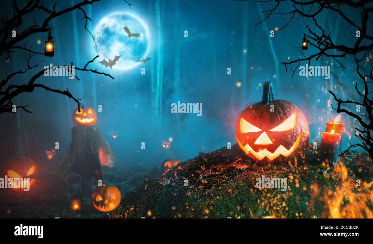 You have probably seen the dark halloween decor photo on any of your favorite social networking sites, such as facebook, pinterest, tumblr, twitter, or even your personal website … Spooky Halloween Pumpkins In Dark Mistery Forest Scary Halloween Background With Free Space For Text Stock Photo Alamy