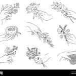 Hands Holding Flowers Outline Female Hand With Bouquets Olive Branch Peony Meadow Flower For Minimal Boho Tattoos Spa Floral Vector Set Stock Vector Image Art Alamy