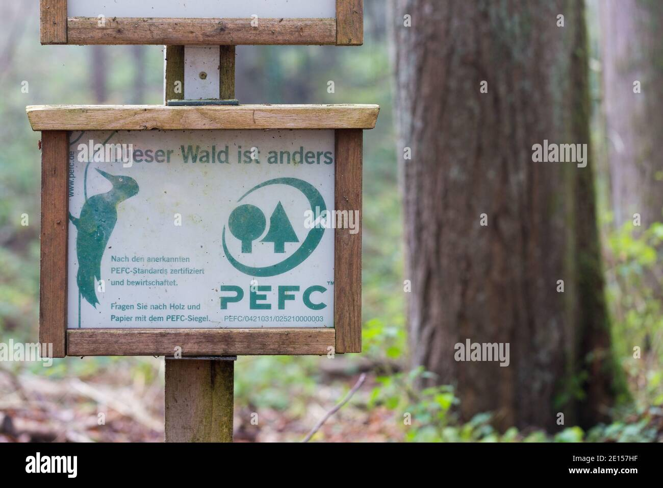 Organisations with a valid pefc chain of custody certificate can only use the pefc logo. Landsberg Germany Nov 25 2020 Pefc Sign In A Bavarian Forest Tree In The Background Pefc Certified Forests Are Managed In A Sustainable Way Stock Photo Alamy
