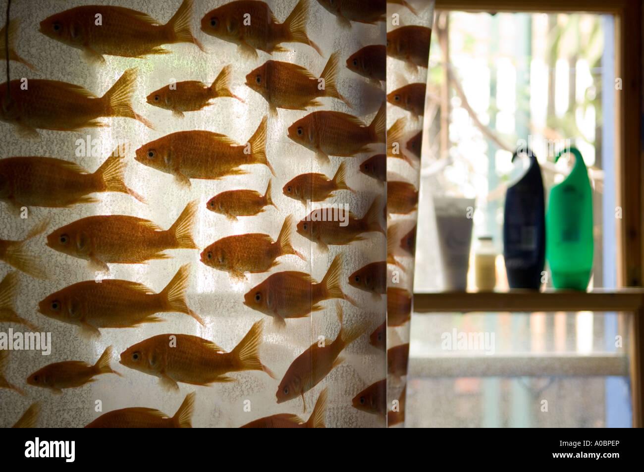 https www alamy com shower curtain with goldfish design image9945549 html