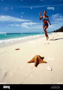 Freeport Bahamas Stock &