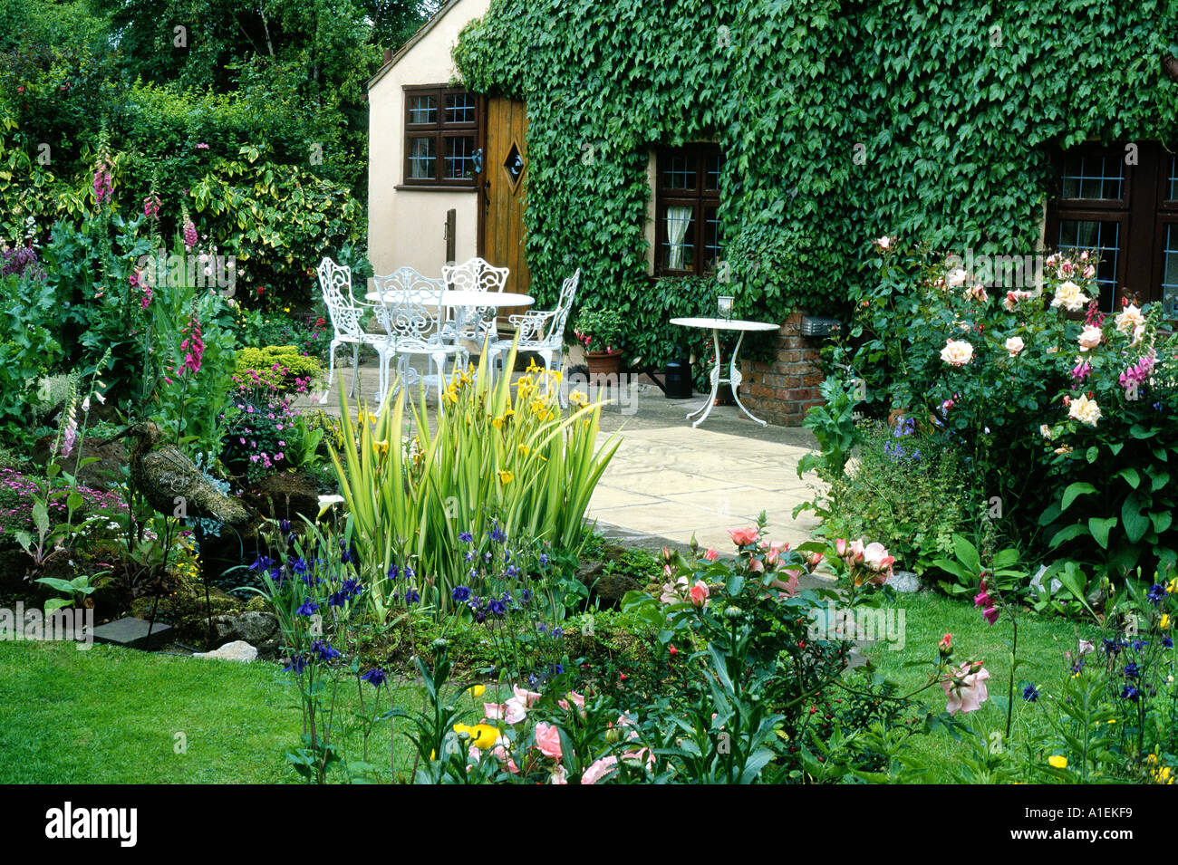 Pond Patio House and small Garden plants flowers table