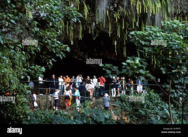 Hawaii Kauai Fern Grotto Stock 5891339 - Alamy
