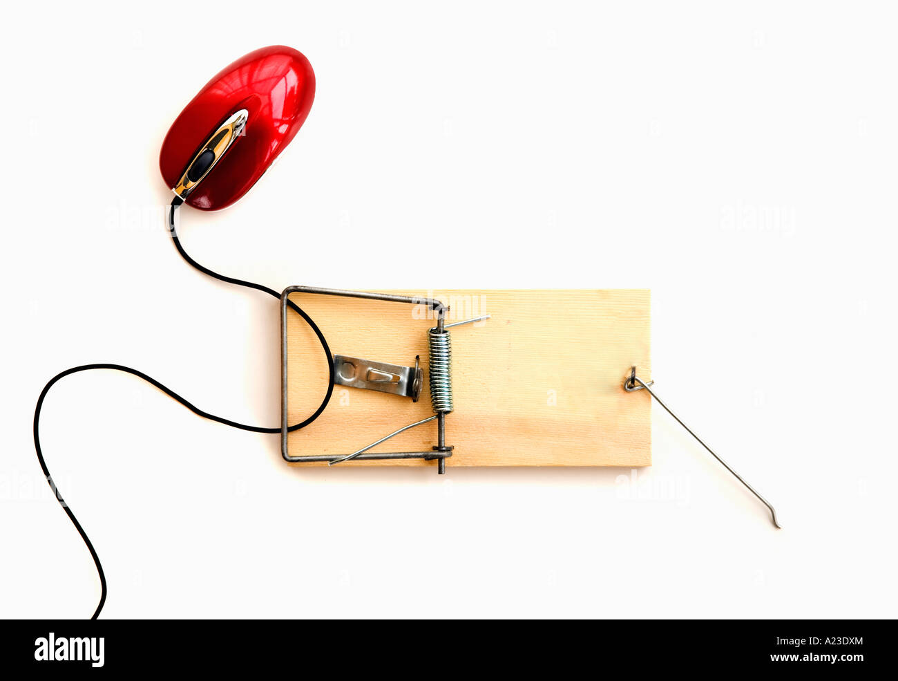 hight resolution of computer mouse caught in a wooden mousetrap