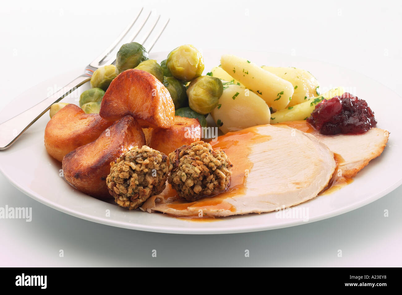 hight resolution of plate of christmas dinner with turkey stuffing roast potatoes sprouts gravy and cranberry sauce