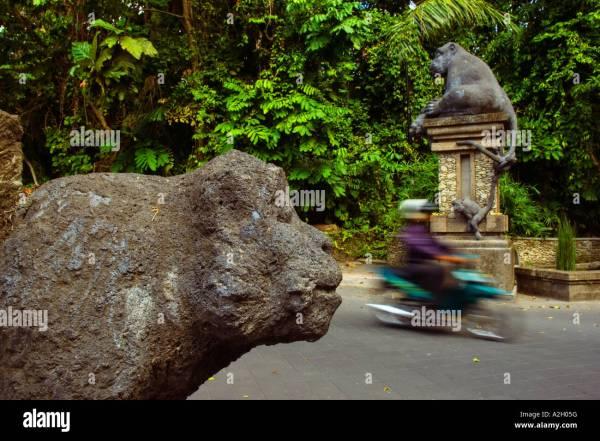 Monkey Forest Road Bali Stock & - Alamy