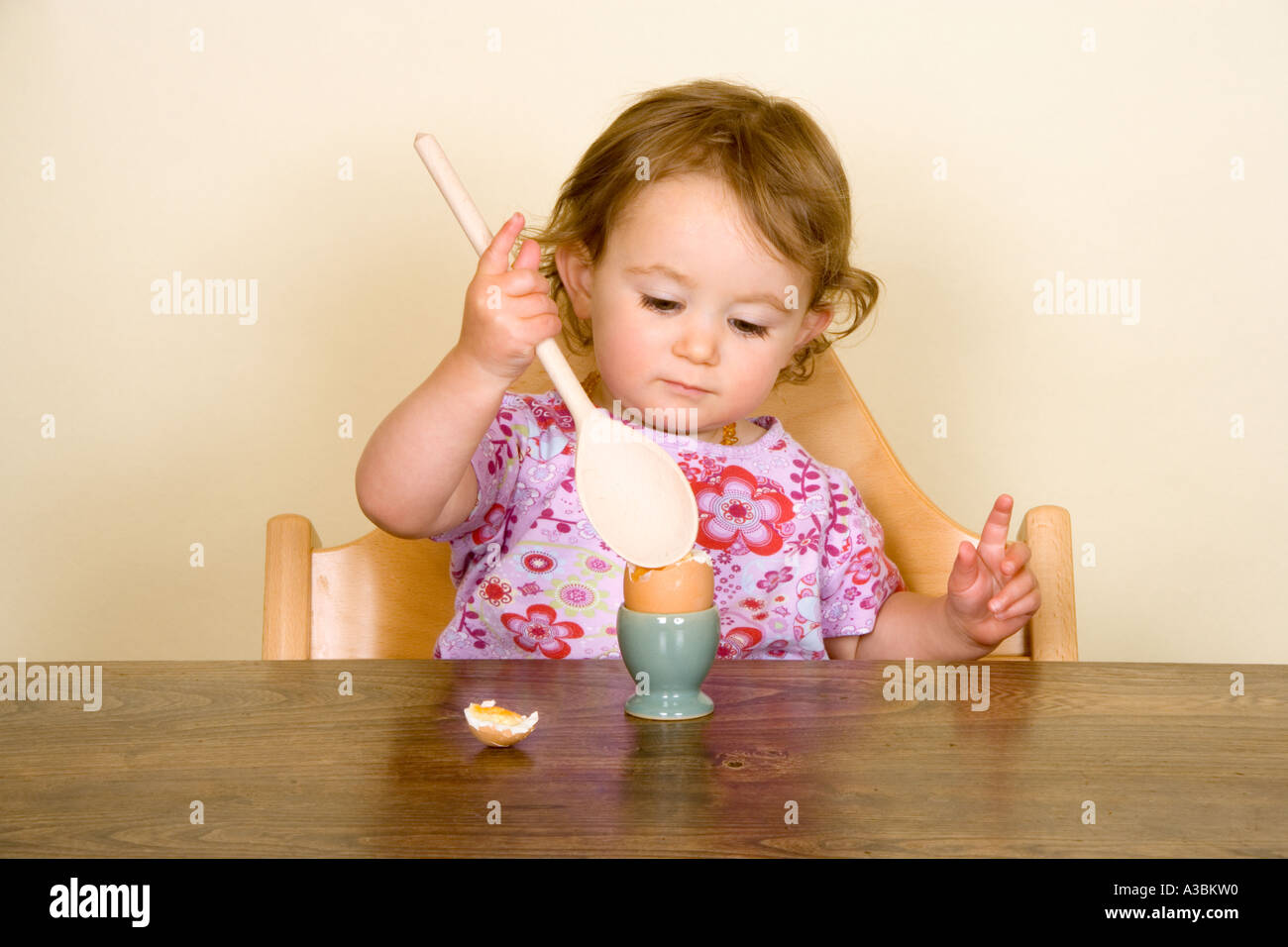 Baby eating boiled egg in high chair Stock Photo Royalty