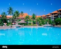Manmade Island Palm Stock &