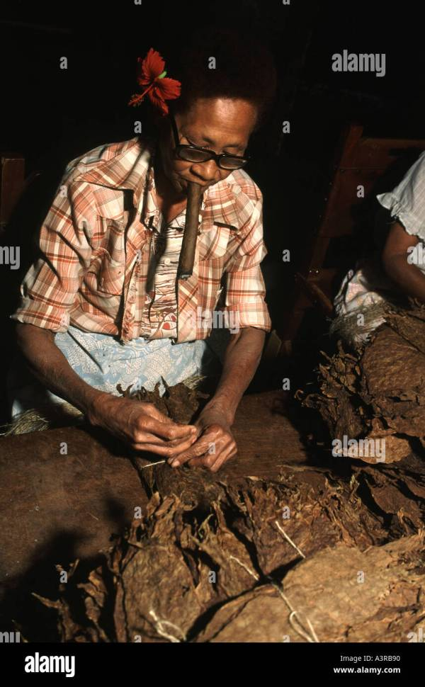 Cuba Havana Bundles Cigars Stock & - Alamy